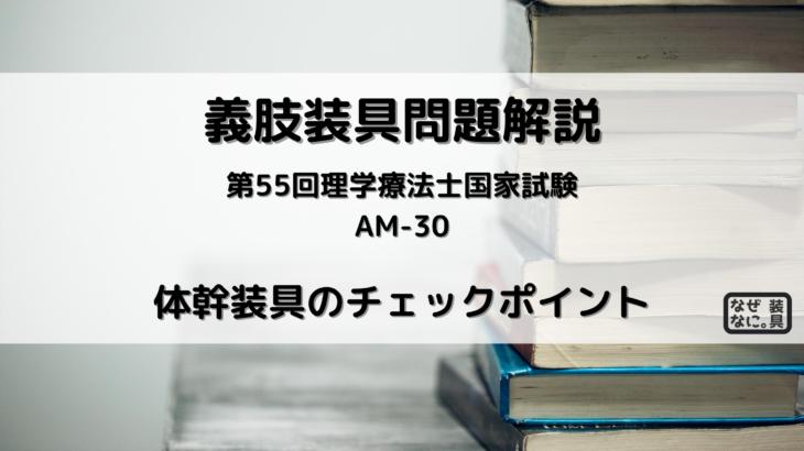 問題解説PT55AM30