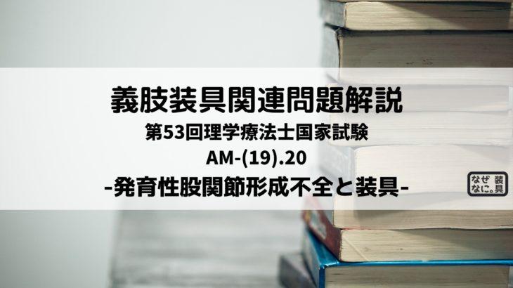 第53回理学療法士国家試験 AM-20 義肢装具問題解説 発育性股関節形成不全と装具
