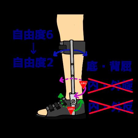 短下肢装具が行う制約