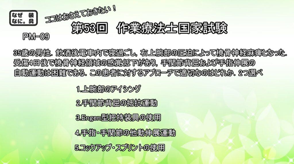 作業療法士国家試験午後-問09
