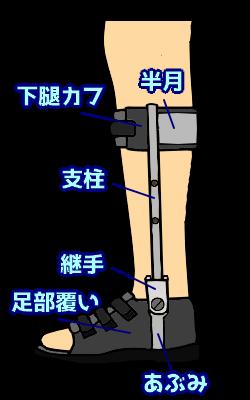 両側支柱付短下肢装具の構成要素