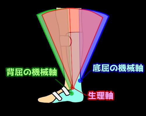 SHBの生理軸と機械軸