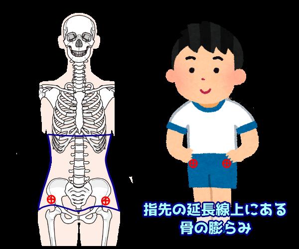 上前腸骨棘を覆う位置に