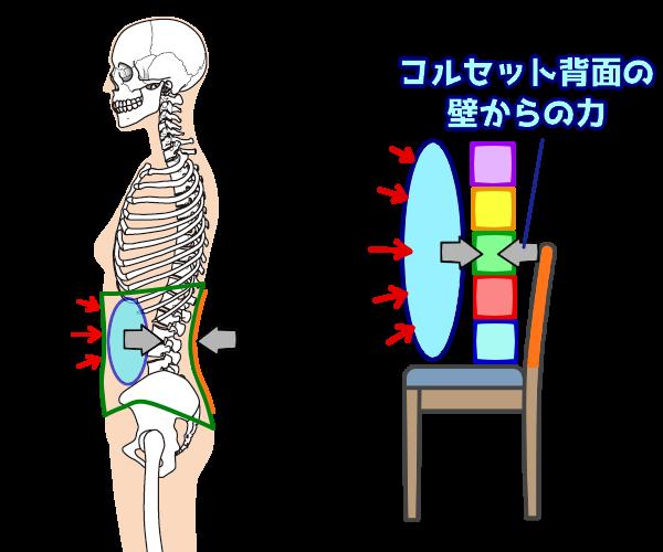 腹圧を高める効果1