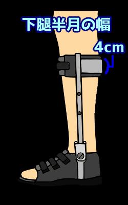下腿半月の幅