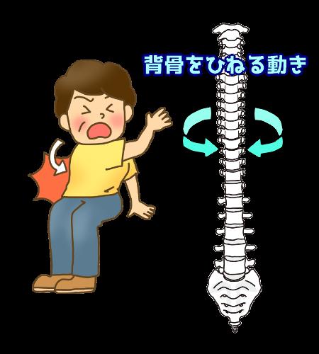 脊椎の回旋