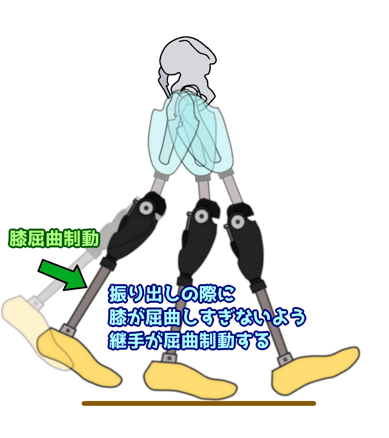 膝屈曲制動による遊脚相制御